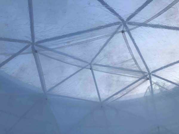 COP25 Fog